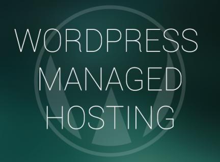 hosting-plus-3