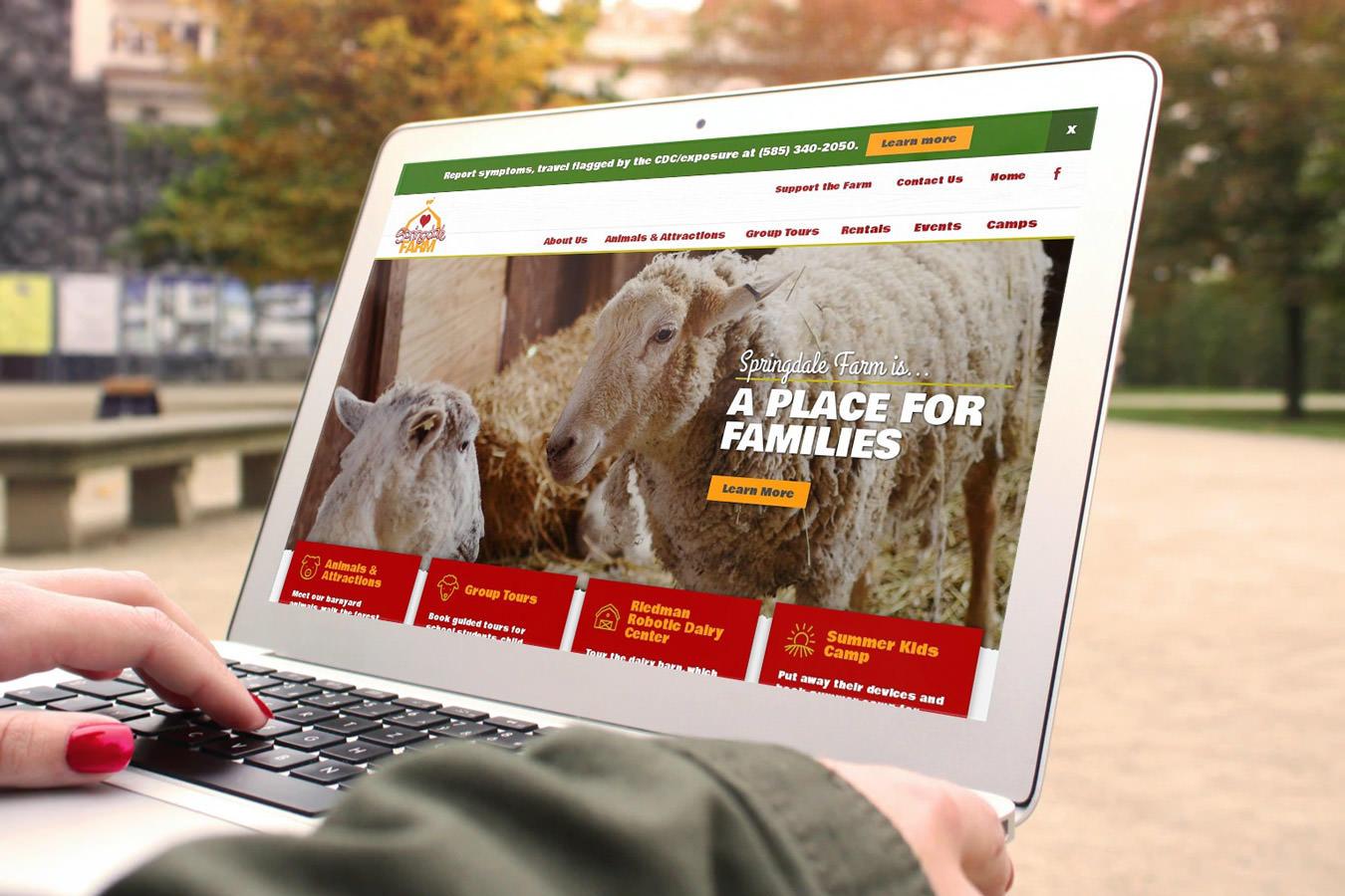 Springdale Farm website